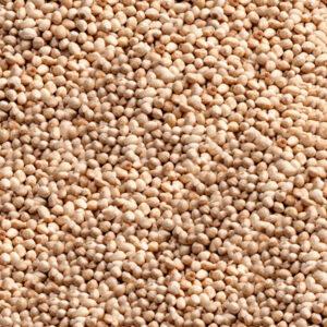 Giresun Pikola (Küçük) Kavrulmuş İç Fındık - 500 Gr., pikola iç fındık, pikola kavrulmuş fındık fiyat,